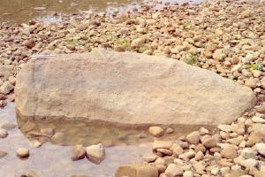 A ten-foot-long rock sits among creek gravel with a ruler on its left side