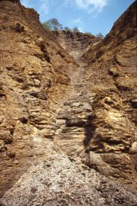 A jagged valley of golden-colored dry shale, looking up a hillside