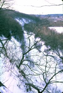 Scraggly trees grow on the side of an almost sheer snow-dusted shale cliff, overloking a narrow valley